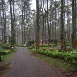 Hutan Cikole